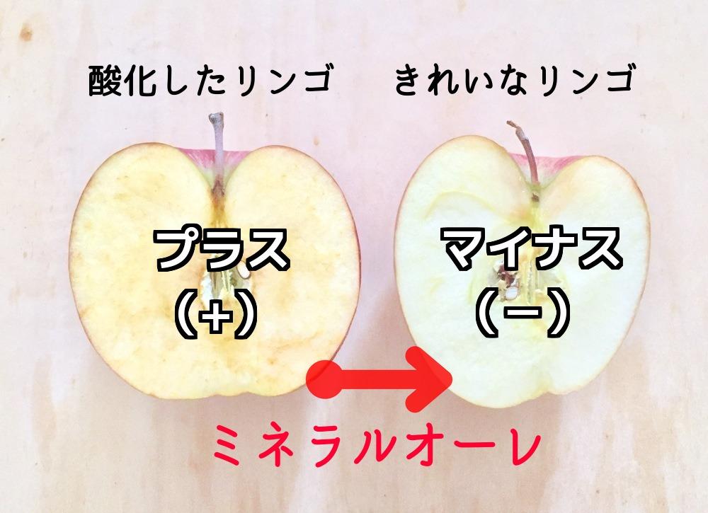 酸化したリンゴをキレイなリンゴに戻してくれるエレクトーレの独自成分「ミネラルオーレ」